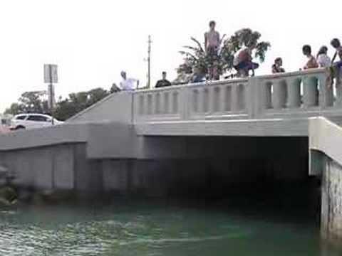 Casey Key Bridge Jumping 2