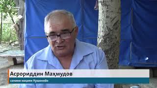 Нома ба Путин: қотилони бародарамонро пайдо кунед