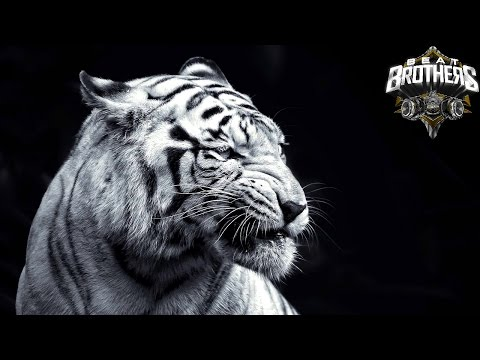 Hard Motivational Choir Rap Beat Instrumental 2016 ►Fight◄