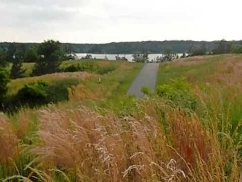 Homes for Sale - 24 Belle Grove Dr Clarksville VA 23927 - Lise Burnett