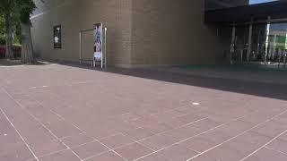 朝の散歩道No 94 下北文化会館前のハクセキレイ