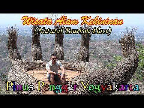 hutan-pinus-pengger-yogyakarta