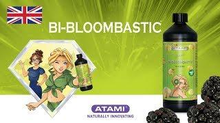 ATA NRG Bi-Bloombastic | Animation (EN)
