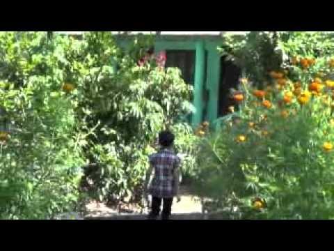 Forest Resort | Chitwan, Nepal