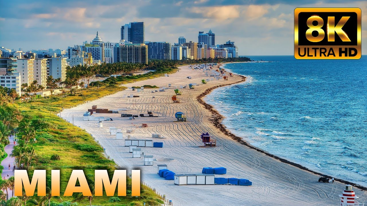 Download Raw Beauty of Miami 8K