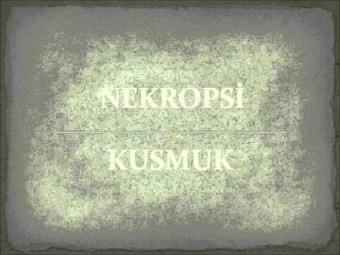 Nekropsi   Kusmuk 1998