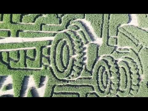 2019 Corn Maze Reveal for Grandpa's Pumpkin Farm