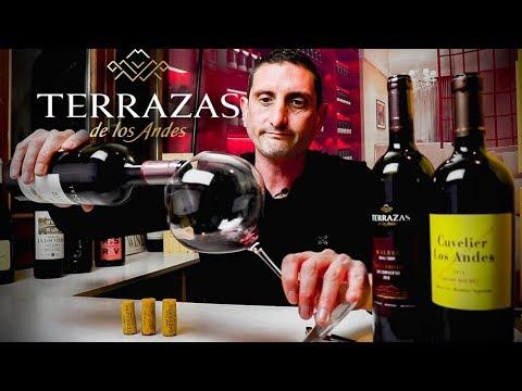 Terrazas De Los Andes Malbec Argentina Wine Review