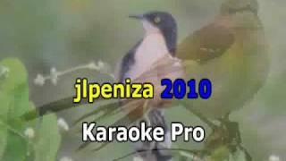 Pedro Infante - La Calandria (Karaoke).wmv