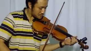 Bụi Phấn (Vũ Hoàng - Lê Văn Lộc) - Violin Cover