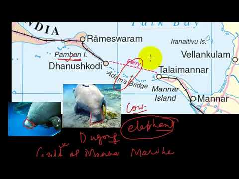 Why there is conflict in Palk Strait and Gulf of Mannar ?- UPSC -PT- 11th October 2017