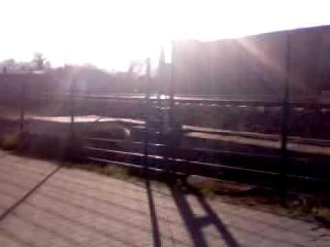 radfahrer-gegen-fussgaenger-no.1---4-2009