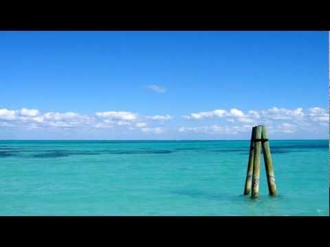 DJ Sakin & Friends - Protect Your Mind (DJ pluTONYum remix)