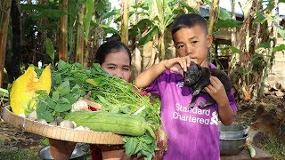 Awesome Cooking 7 Vegetable Soup W/ Fish Shrimp Recipe - Village Food Factory -6 Baby Dogs beautiful