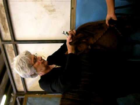 Michelle Deck-Mare more head releases.AVI