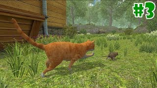 Mouse Simulator - Life of Mouse- Android/iOS - Gameplay Episode 3