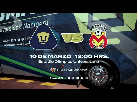 CL2019 | Color Liga MX | Pumas vs. Monarcas