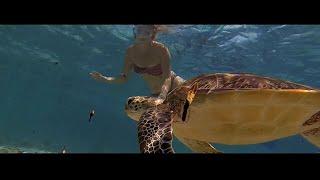 Seychelles Tourism Film 2014 - 3min Edit