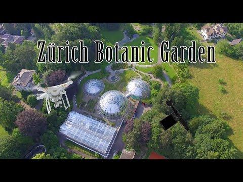 Zürich Botanic Garden in 4k