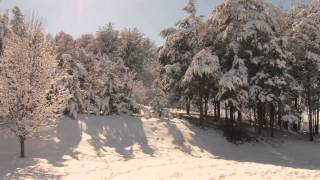 A Shenandoah Winter