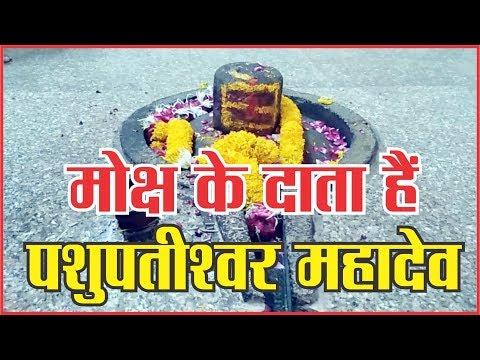 मोक्ष के दाता हैं पशुपतीश्वर महादेव #dharam #God #aarti #mahakaal #sanidev #jyotirling