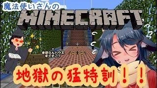 [LIVE] 【柏衣みゃ】魔法使いさんの挑戦状!!【MINECRAFT】