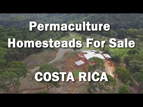 Permaculture Homesteads for sale in Regenerative Neighborhood~ COSTA RICA