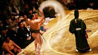 2017.02.05日本大相撲トーナメント第四十一回大会①⑧白鵬VS栃煌山(二回戦...
