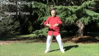 The Vagus Never Qigong by Master Alex Galvan
