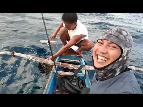Philippine Fishing|60kg Yellow Fin Tuna