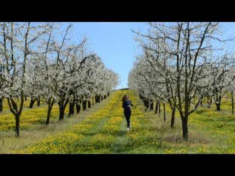 Spring in Lot et Garonne, FRANCE.