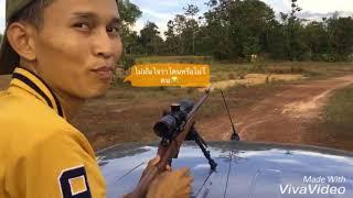 ทดสอบปืนลูกกรด cz 455jaguar .22lr แบบบ้านๆ
