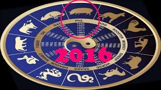 Восточный гороскоп для знака Свинья (Кабан) на 2016 год