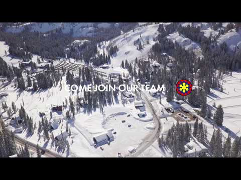Come Join Our Team At Brighton Resort!