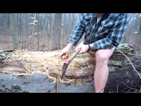 Charred Punk Wood  Collecting and making Fire Starter