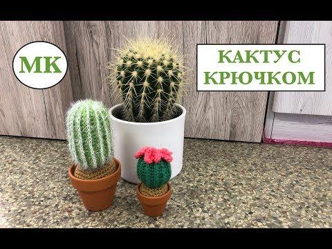 Как связать крючком кактус в горшке видео
