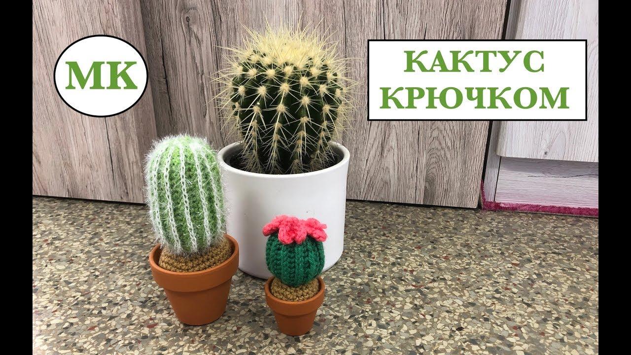 мк кактус крючком 2 сорта 1 схема Youtube
