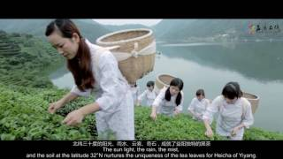 Video Beauty of YiYang download MP3, 3GP, MP4, WEBM, AVI, FLV Desember 2017
