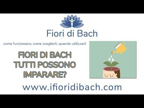Fiori di Bach tutti possono imparare a somministrarsi i fiori?