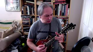 The £42 Cheque (polka) on mandolin