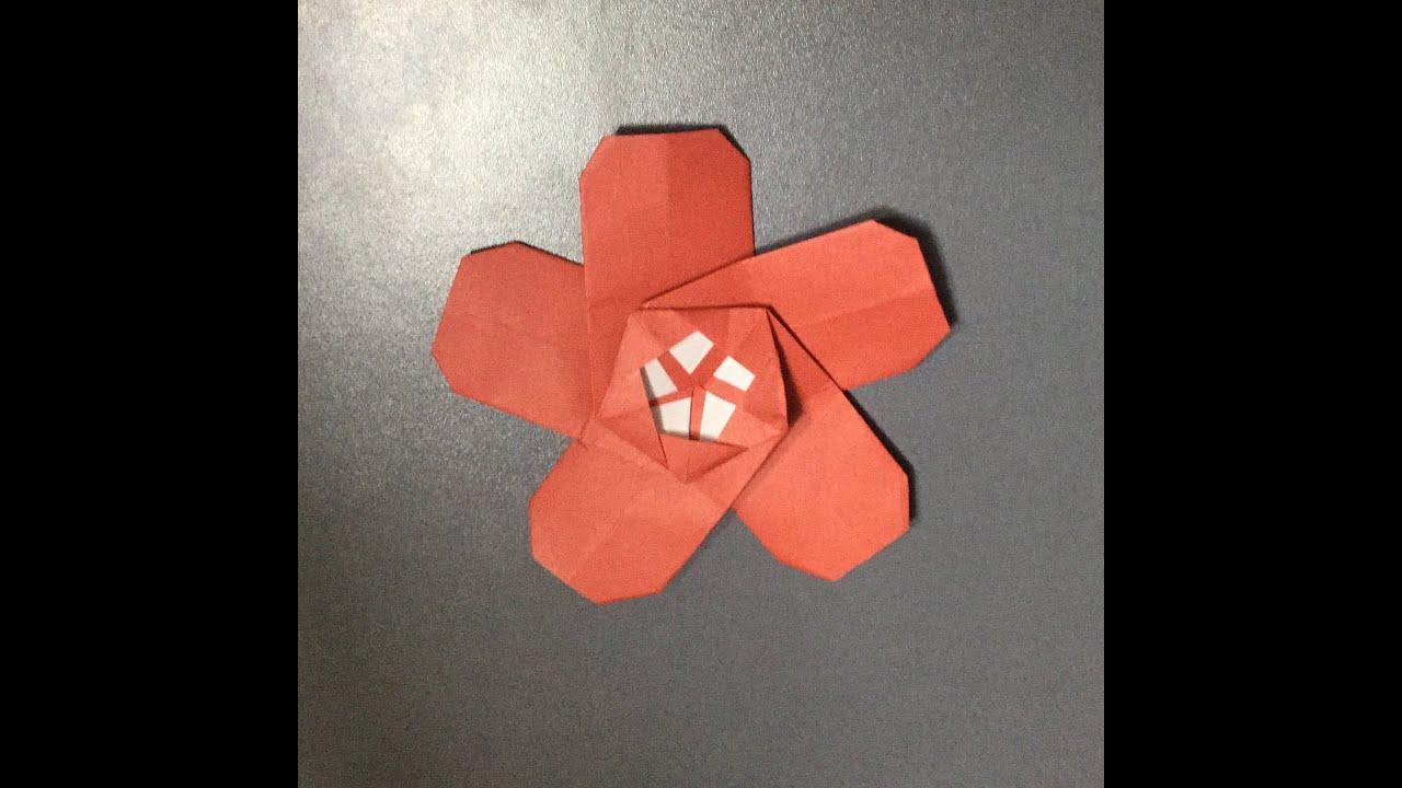 すべての折り紙 youtube 折り紙 : 折り紙 梅の花 折り方 作り方 ...