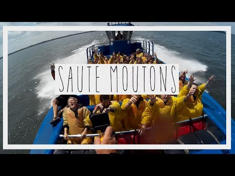 JET BOATING MONTREAL - SAUTE MOUTONS