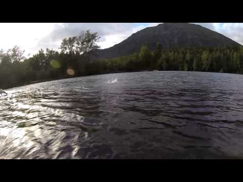 Alaskan Salmon - Kenai & Russian River - Underwater Video - GoPro