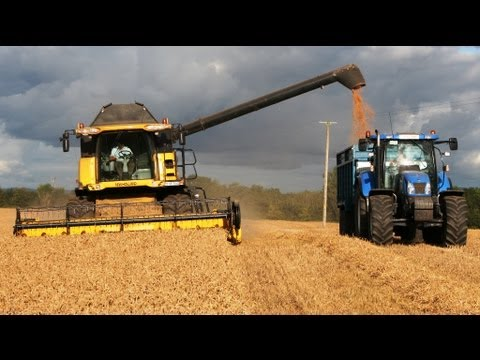 Harvest 2011 Roger Perry at the Winter Wheat with New Holland Machinery