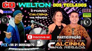@WELTON DOS TECLADOS OFICIALLIVE 90 participação forró Calcinha na Regada bandas de forró ao vivo