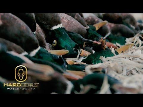 Duck Hunting: 10 Man Limit of Mallards - Hard Core Waterfowl TV Episode 3