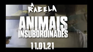 Download A RABELA - Animais insubordinades