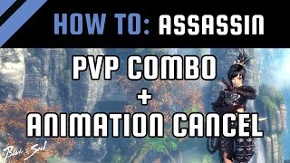 How To: Assassin PvP Combo + Animation Cancel [Blade and Soul Guide / Tips]