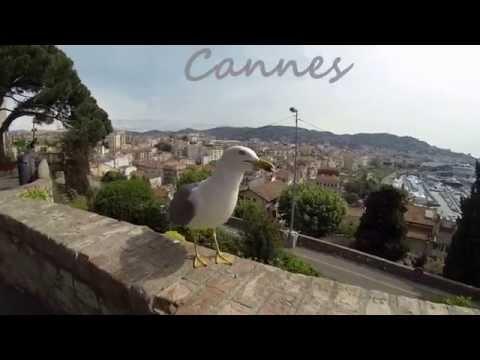 TOUR THE FRANCE (Nice Monaco Eze Menton Cannes) May 2014