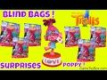 Dreamworks Trolls Series 4 Blind Bags Surprise Toys Opening Poppy Music Box Satin Chenille Branch